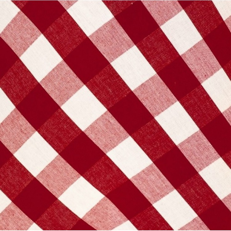 Rouge Gingham Swatch