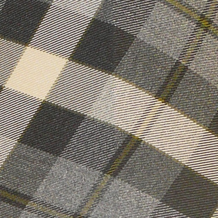 Fraser Charcoal Check Swatch